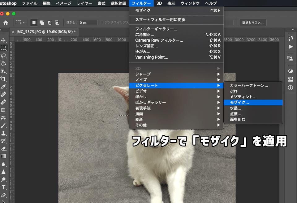 Photoshopのフィルター機能でモザイクを適用
