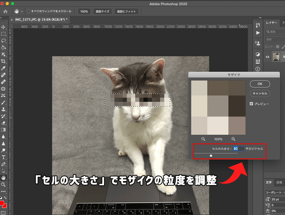 Photoshopでモザイク処理の粒度を調整